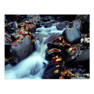 Waterfall in autumn, near Capelton, Estrie, Quebec Postcard