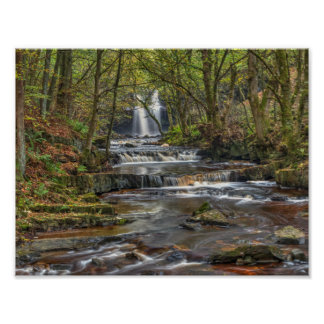 Waterfall in Autumn Poster