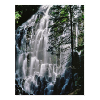 Waterfall in forest, Oregon Postcard