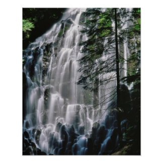 Waterfall in forest, Oregon Poster