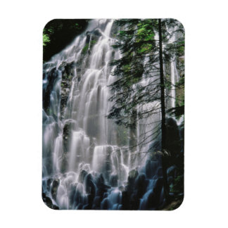 Waterfall in forest, Oregon Rectangular Photo Magnet