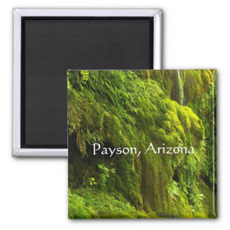 Waterfall in green in Payson,Arizona, Magnet