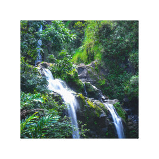Waterfall in Maui Hawaii Canvas Print