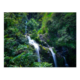 Waterfall in Maui Hawaii Postcard