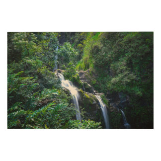 Waterfall in Maui Hawaii Wood Canvases