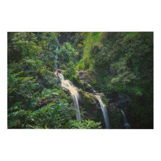 Waterfall in Maui Hawaii Wood Wall Art