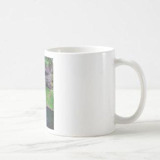 Waterfall in Oregon Coffee Mug