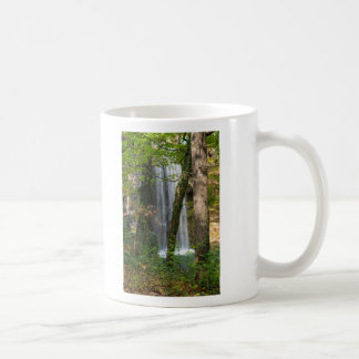 Waterfall In The Woods Coffee Mug