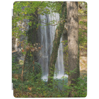 Waterfall In The Woods iPad Cover