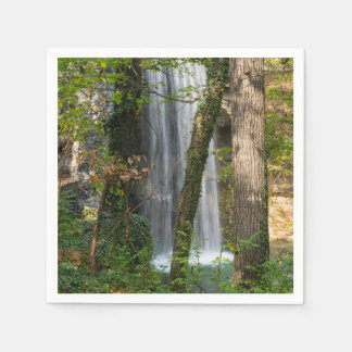 Waterfall In The Woods Napkin