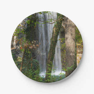 Waterfall In The Woods Paper Plate
