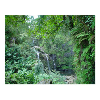 Waterfall on the Road to Hana Postcard