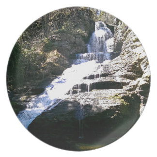 Waterfall Party Plate