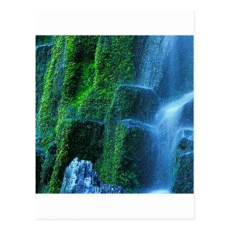 Waterfall Proxy Willamette Flow Postcard
