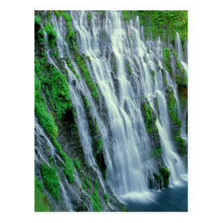 Waterfall scenic, California Postcard