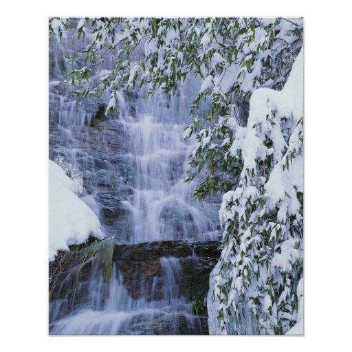 Waterfall, Sequoia and Kings Canyon National Poster