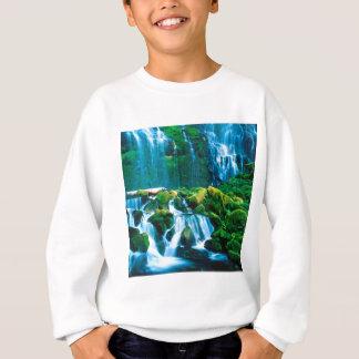 Waterfall Twins Proxy Willamette Sweatshirt