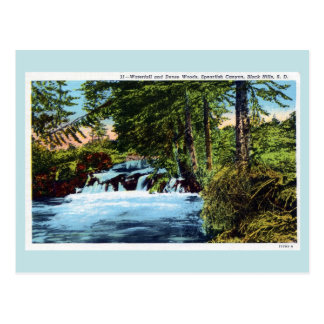 Waterfall, woods, Spearfish Canyon, Black Hills SD Postcard