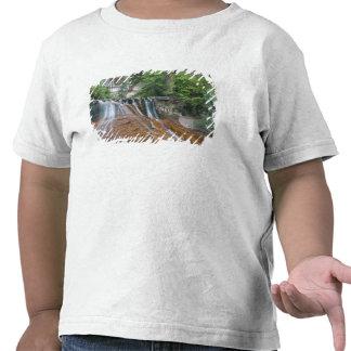Waterfall, Zion National Park, Utah, USA Tee Shirts