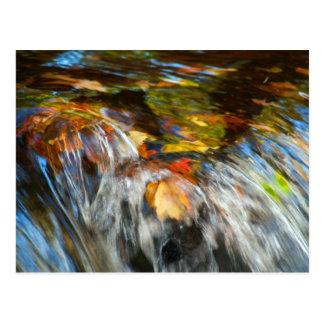 Waterfalling Leaves Postcard