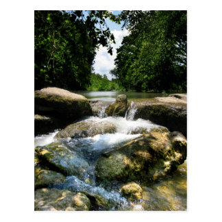 Waterfalls 5 on Barton Creek in Austin Texas Postcard
