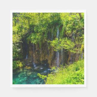 Waterfalls in Plitvice National Park in Croatia Disposable Napkin