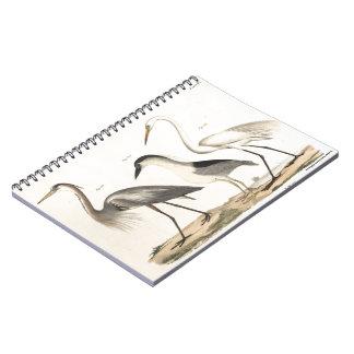 Waterfowl Notebook