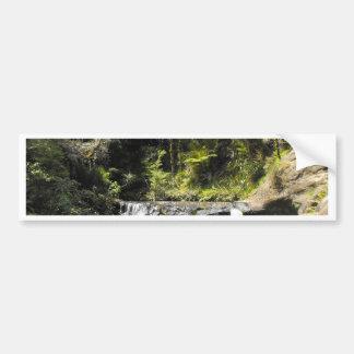 Waterhole at Goldie Bush Walk Bumper Sticker