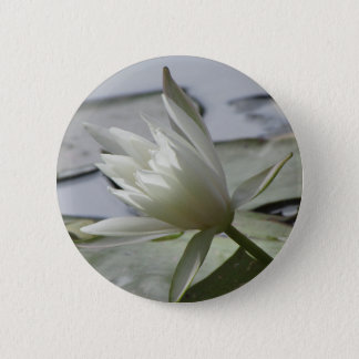 Waterlily Button