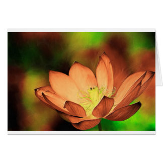 Waterlily in Oil Card