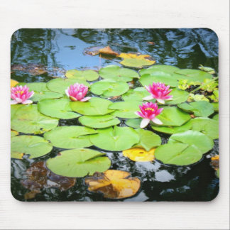 Waterlily Mouse Pad