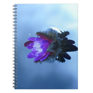 Waterlily Notebook or Journal