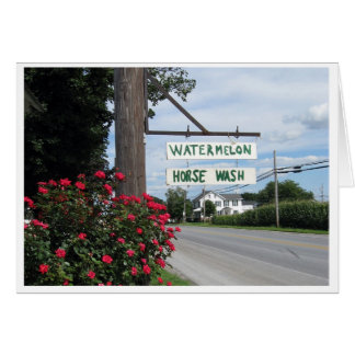 Watermelon and Horse Wash Sign (horizontal) Card