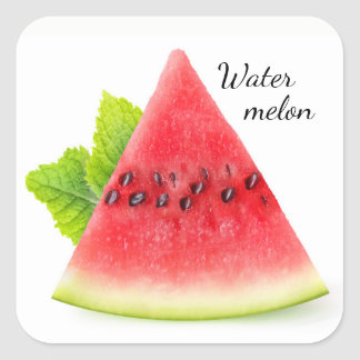 Watermelon and mint square sticker