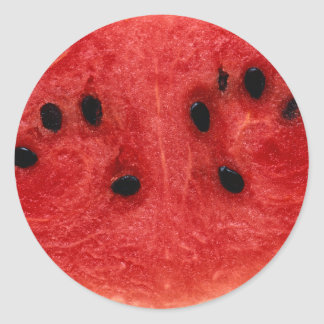 Watermelon Flesh Classic Round Sticker