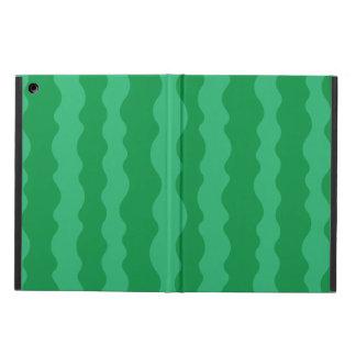 Watermelon Rind iPad Air Cover