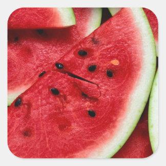 Watermelon Slices Square Sticker