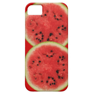 watermelon time iPhone 5 cases