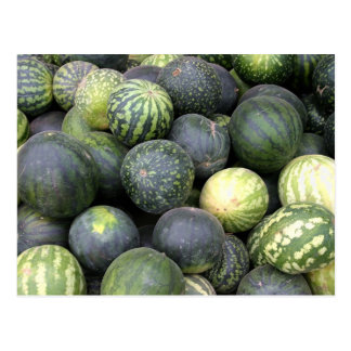 watermelons postcard