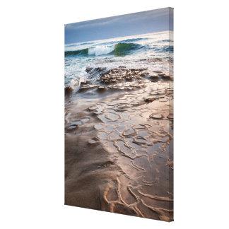 Wave breaking on beach, California Canvas Print