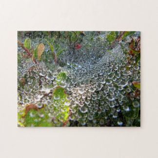 Wave of Dew in a Spider Web Jigsaw Puzzle