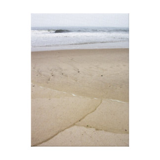 Waves on the Beach Canvas Print