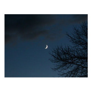 Waxing Crescent Moon In Sagittarius Postcard