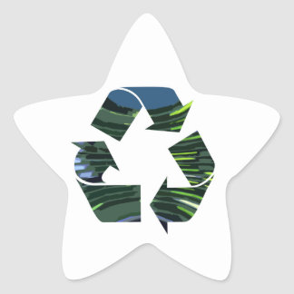 We adore Recycle Champion nvn236 Green Environment Star Sticker