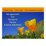 We Appreciate Wonderful Nurses CNAs Nursing poster