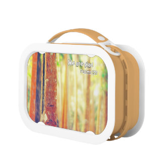 We are glad lunch box