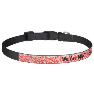 We Are MINT To Be Pet Collar