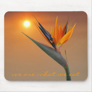 we are what we eat mouse pad