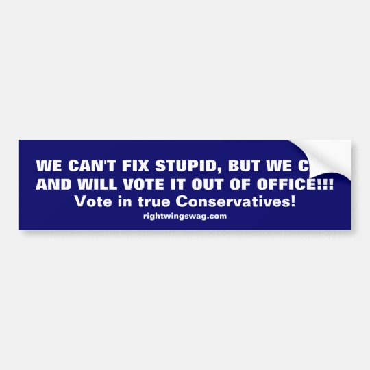 WE CAN'T FIX STUPID BUMPER STICKER