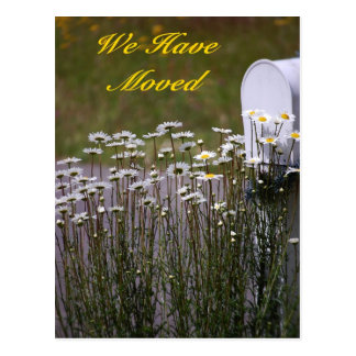We Have Moved Daisies Mailbox Postcard